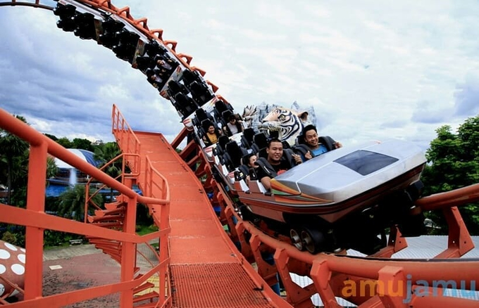 People on an exhilarating roller coaster ride